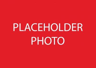 PLACEHOLDER2-01