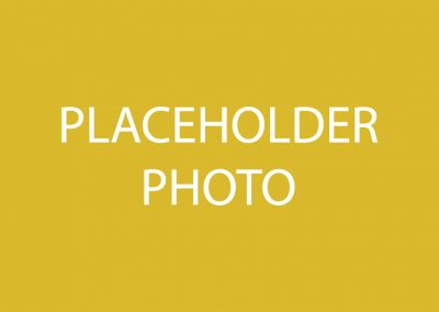 PLACEHOLDER3-01